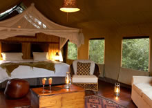 tented suite at Thakadu