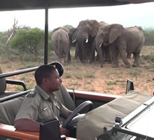 Kids on a game drive at Mabula
