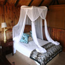 Ivory Tree Lodge Package in Hwange National Park, Zimbabwe