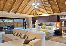 Executive Suite at Ivory Tree