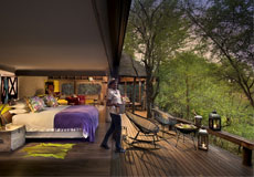 Starbed suite open to the bush