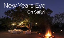 New years Eve on Safari