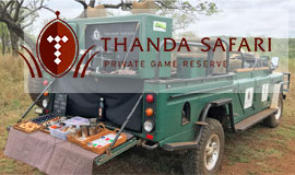 Sundowner cabinet on game drive