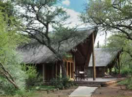 Black Rhino Suite