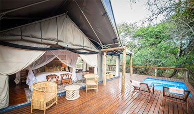 Private Plunge pool on the tented Lodge